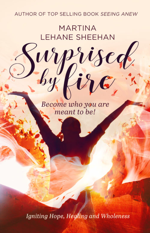 Surprised by Fire Cover